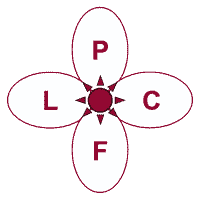 Lincolnshire Parent Carer Forum logo